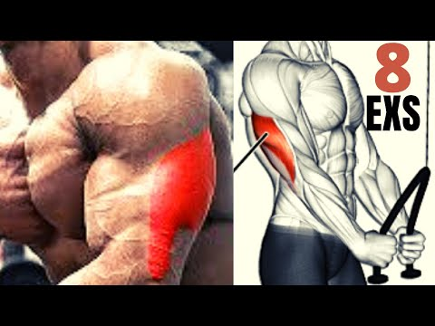 8 BEST TRICEPS EXERCICES FOR BIGGER ARMS / tricep workout