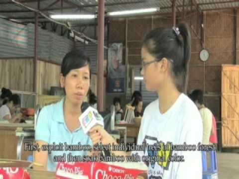 KWN-TÂM HỒN TRE VIỆT-THCS Lý Thường Kiệt-2010