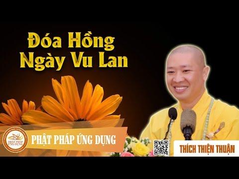 Đóa Hồng Ngày Vu Lan (KT20) - Thích Thiện Thuận