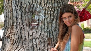 Hippie Beginnings | Hannah Stocking