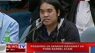 NTVL: Pagdinig ng Senado kaugnay ng pork barrel scam (Sept. 12, 2013 - Part 4)