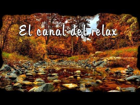 LA MEJOR MUSICA RELAJANTE, THE BEST RELAXING MUSIC.