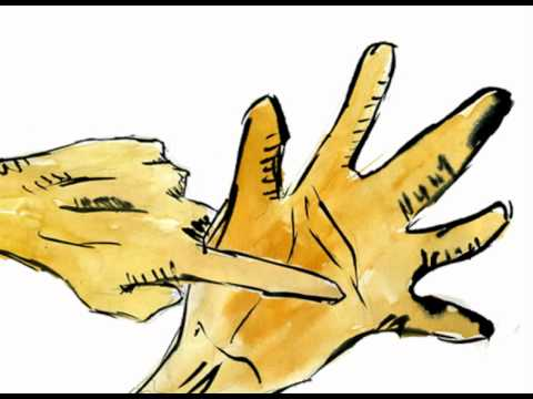 Hands Animation - Sarah Kay spoken word