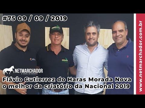 #75 No Trilho da Marcha -  09/09/201 com Flávio Gutierrez Haras Morada Nova - Mangalarga Marchador