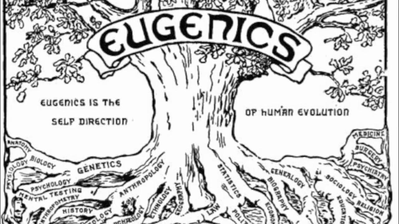 bloodlines of the illuminati book pdf