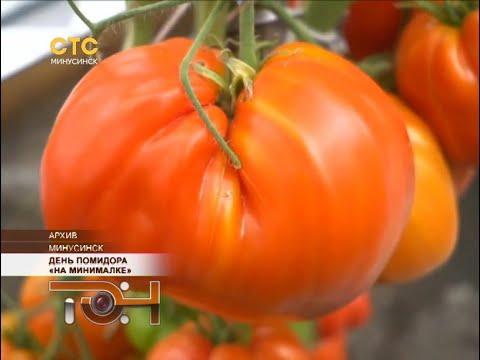 День помидора «на минималке»