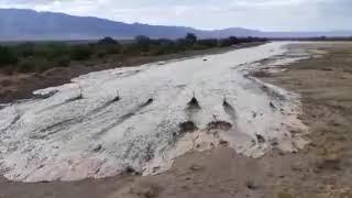 Entre la sequía y la desidia