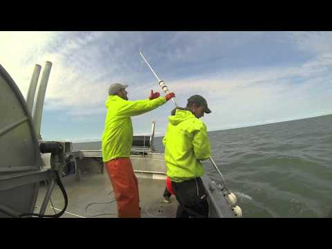 Alaska Commercial Fishing 2013