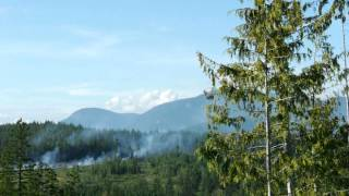 [Forest Fire in Powell River] Video