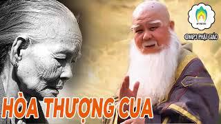 Câu Chuyện Cảm Động Giữa Hòa Thượng Cua Và Mẹ - Truyện Phật Giáo Có Thật