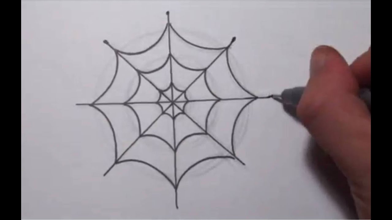 Spider in web drawing - photo#1