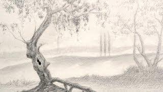 Como dibujar un árbol