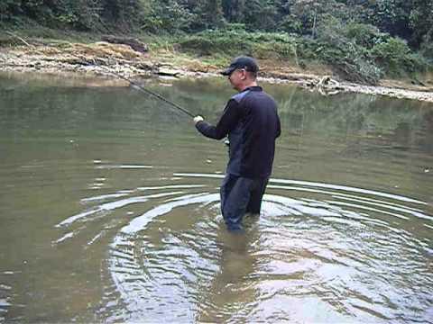 태국 가물치루어낚시  Snakehead lure fishitng Thailand Khao Sok National Park