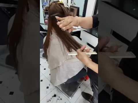Chia sẻ kỹ thuật cắt tóc chiếc lá căn bản - [Vĩnh Kim]
