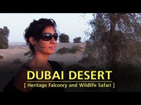 Dubai Desert - Heritage Falconry and Wildlife Safari