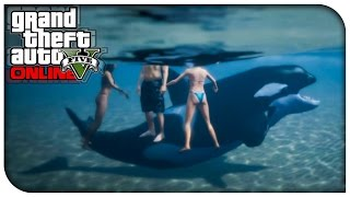 """GTA 5 Xbox One / PS4 """"PLAY AS A KILLER WHALE!"""" (New"""