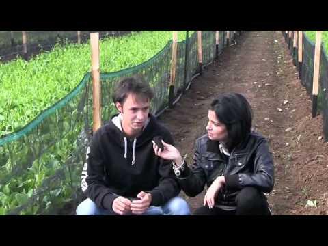 L'economia delle lumache ha il suo imprenditore più giovane a Sant'Albano Stura