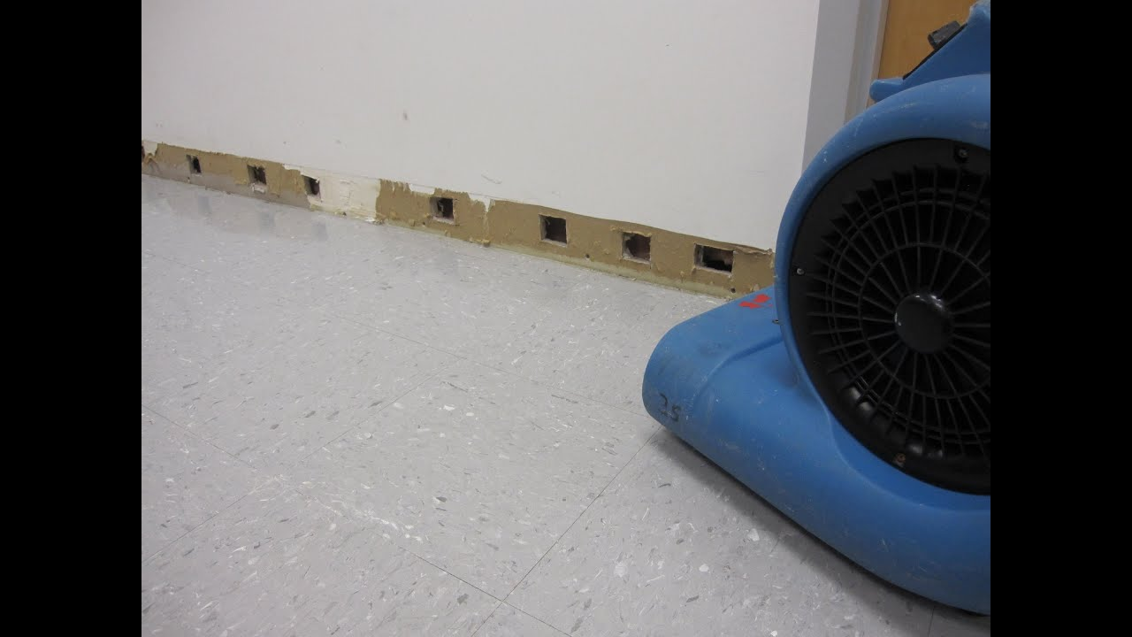How To Dry Wet Carpet in the Basement - YouTube