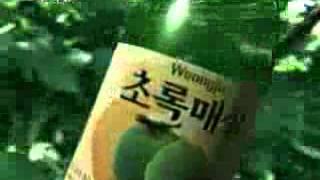 초록매실_조성모 동영상 이미지