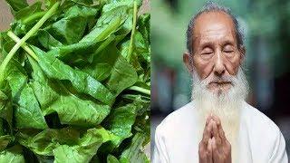 Muốn Thọ Trên 100 Tuổi Hãy Thường Xuyên Ăn 7 Loại Rau Này, Bệnh Tật Gì Cũng Bị Đẩy Lùi Hết