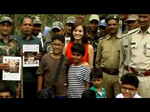 Mowgli's land: The kids for tigers special, featuring Dia Mirza