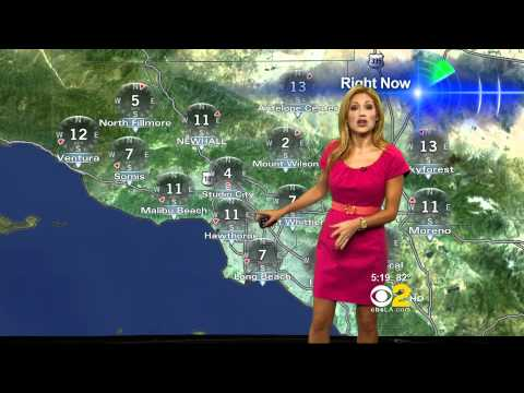 Jackie Johnson 2011/03/30 5PM CBS2 HD; Pink dress