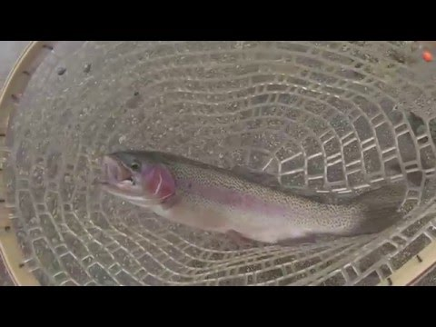 how to use fishing bobbers