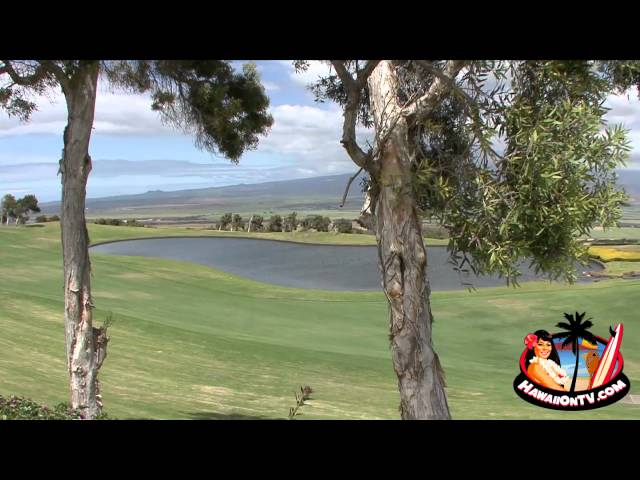 The King Kamehameha Golf Club - Michael H. Lyons II - 2011 Palaka Award