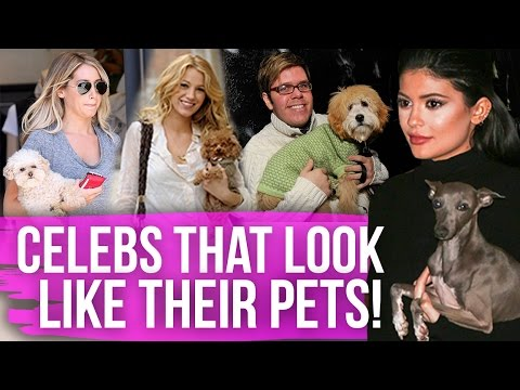5 Celebs That Look JUST Like Their Pets! (Dirty Laundry)