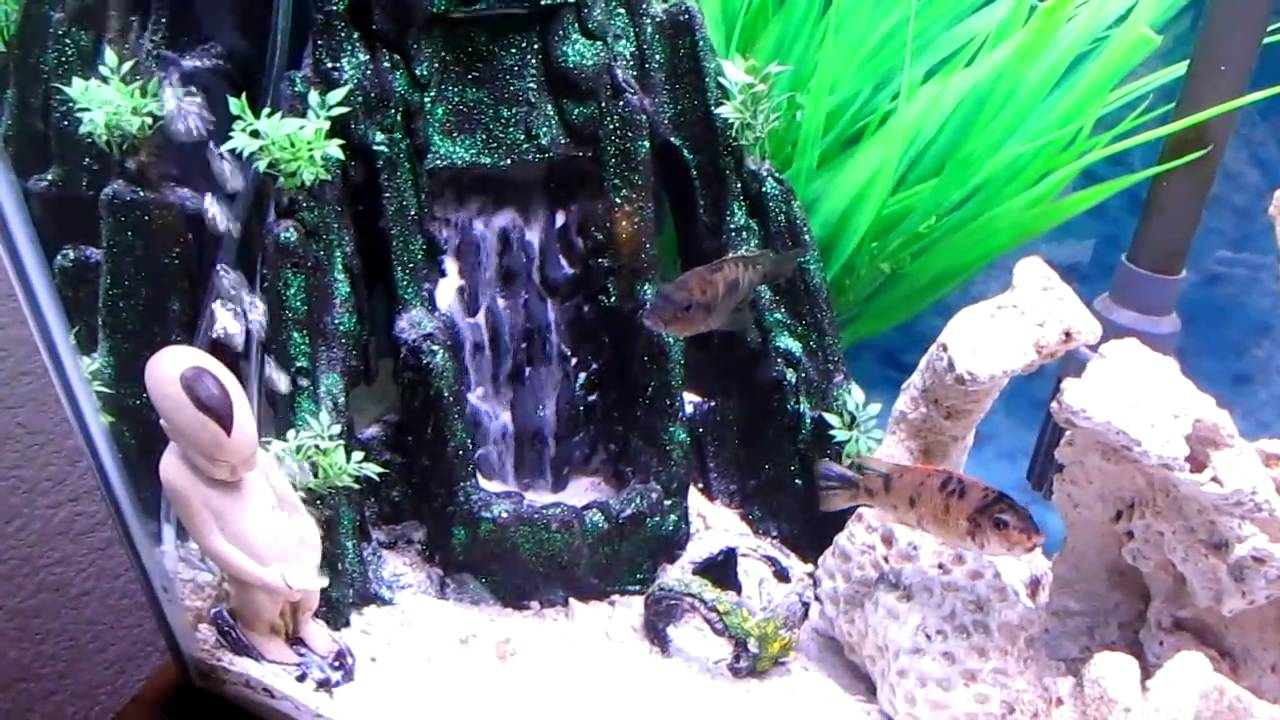 Our sand waterfall aquarium youtube for Aquarium waterfall decoration