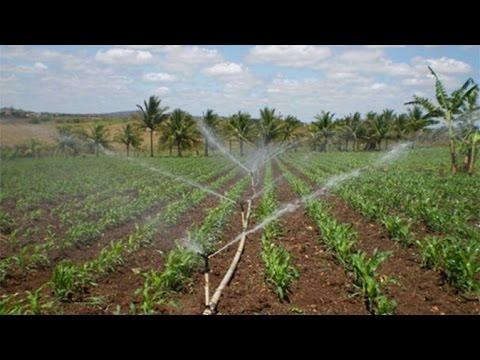 Curso Irrigação em Pequenas e Médias Propriedades - Cursos CPT