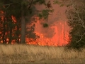 Fast-Moving Brush Fire Threatens Florida Homes