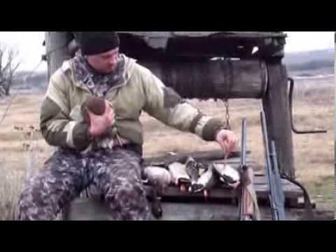 Весенняя охота на утку