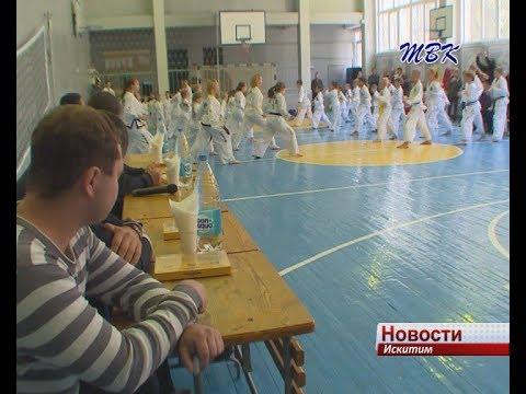 Ударную технику рук и ног успешно осваивают юные искитимцы