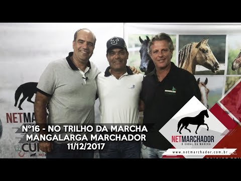 #16 - NO TRILHO DA MARCHA - NET MARCHADOR - MANGALARGA MARCHADOR 11/12/2017 HD