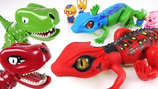Pororo! Let's defeat dinosaurs and find treasure with Robo Alive Lizard brothers! - DuDuPopTOY
