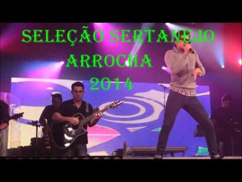 Seleção Sertanejo Arrocha 2014