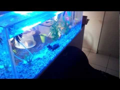 luminaria pvc aquario