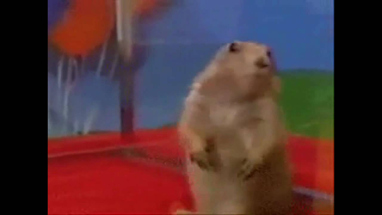 the overly dramatic epic gopher youtube