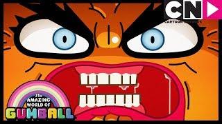 Gumball   Darwin Gets Jealous Of Penny   The Bros   Cartoon Network