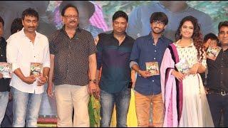 Sreenu Vytla At Cinema Choopistha Maava Audio Launch