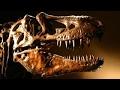 Dinosaur history gets revised?