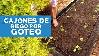 Huerta en cajones con riego por goteo