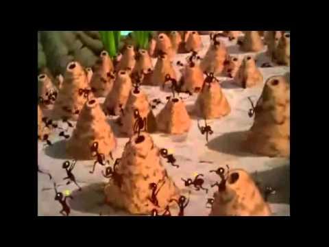 phim hoạt hình mickey  hài hước dành cho thiếu nhi