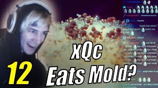 """xQc Reacts to """"Daily Dose of Internet"""" with Chat   Episode 12"""