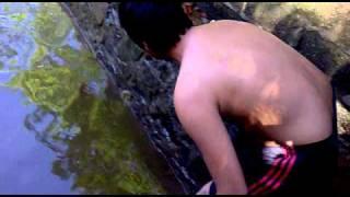 Những Thổ Dân đánh Bắt Cá