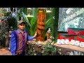 Ngắm chùm sâm ngọc linh khủng hình rồng 'vô giá' đang trưng bày ở Hà Nội