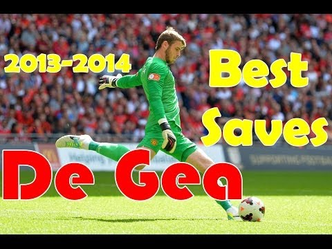 David De Gea ●The Most Amazing Saves 2013/2014