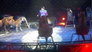 Ringling Bros. and Barnum and Bailey Presents: Alexander Lacey and His Big Cats 2012