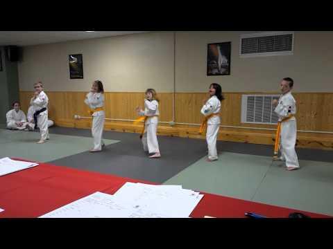 Lakeshore Tae Kwon Do, Manitowoc Martial Arts Instruction Belt Graduation